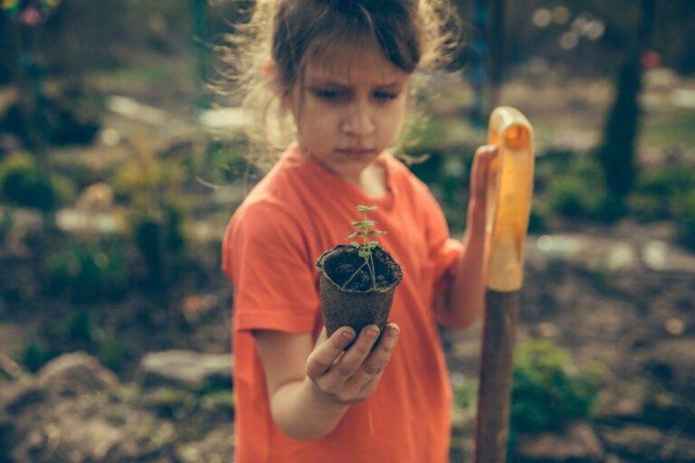 Domowy ogródek to miejsce spotkania z naturą